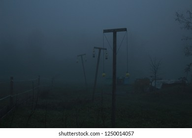 sinister fog in forest