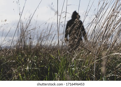 A sinister hooded figure standing in a field, out of focus. With a low camera angle.