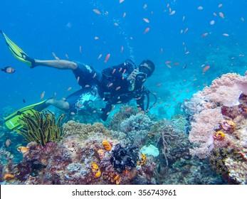 Sipadan Island, Sabah- Malaysia, 19 Mac 2014 : Marine biologist checking coral reef on Mac 19 20141.