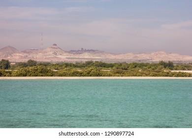 Sir Bani Yas Island, United Arab Emirates (UAE), Abu Dhabi, Persian Gulf