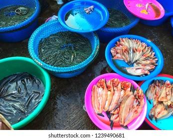 SISAKET, THAILAND – SEPTEMBER 24, 2018 , Some fish in Katthalak Market in Sisaket Thailand. Traveling in Sisaket Thailand.