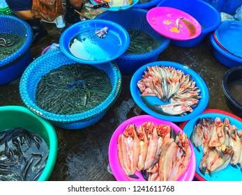 SISAKET, THAILAND – SEPTEMBER 24, 2018 , Some fish in Katthalak Market in Sisaket Thailand. Traveling in Sisaket Thailand. Blurred photo.