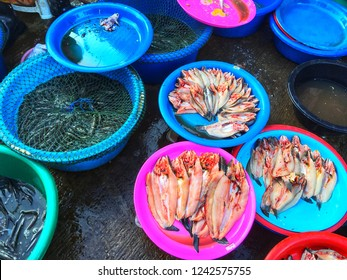SISAKET, THAILAND – SEPTEMBER 24, 2018 , Some fish in Katthalak Market in Sisaket Thailand. Traveling in Sisaket Thailand. Blurred photo