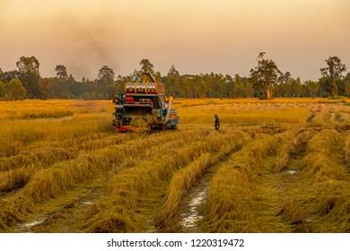 SISAKET,THAILAND,Dec 3, 2018:  The harvesters working on the field in the evening ,at sisaket thailand.