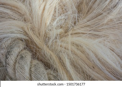 Sisal fiber texture. Background from sisal. Sisal fiber products.Sisal rope abstract background texture.