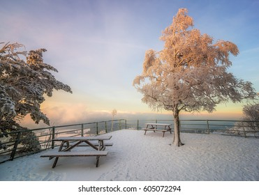 Sit and admire - Shutterstock ID 605072294