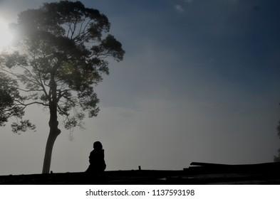 sit under tree in mist no1