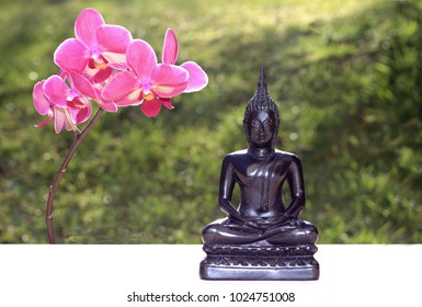 sitting black buddha statue with pink phalaenopsis orchid and green natural background, sunlight