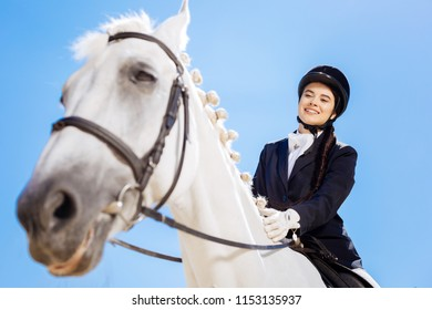 Sitting on horse. Horsewoman wearing white gloves and blue jacket sitting on her white horse