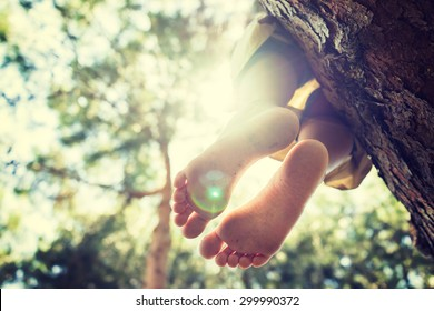 Sitting on the tree, freedom, feet