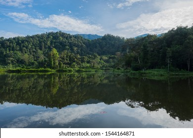 Situ gunung or mountain lake is one of tourist attraction in gede pangrango mount national park