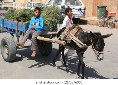 Siwa Oasis, Egypt - September 25th 2009: Two boys leading their fully loaded donkey cart through the town of Siwa