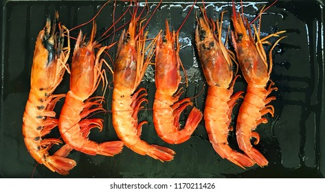 Six big langoustines with oil on the frying pan