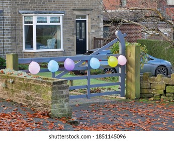 Six colored balloons tied to grey five bared driveway gate house in background leaves on floor Huddersfield Yorkshire England 10/11/2020 by Roy Hinchliffe