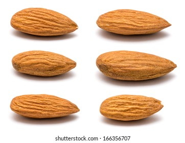 Six Different Almond Fruits Closeup On White Background