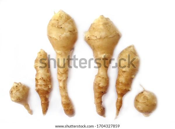Six Jerusaleum artichokes, sunchokes, topinambours on white