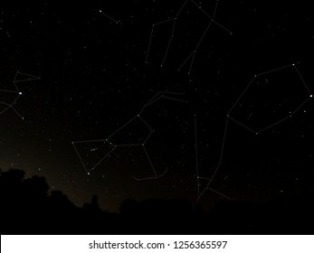 Six star constellations in the night sky