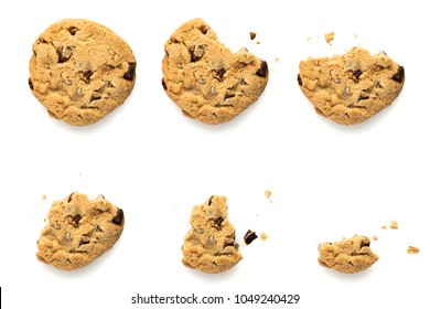 Six steps of chocolate chip cookie with pecan nuts being devoured. Sequence isolated on white background.