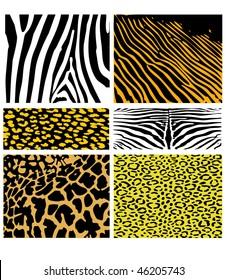Six types of furs