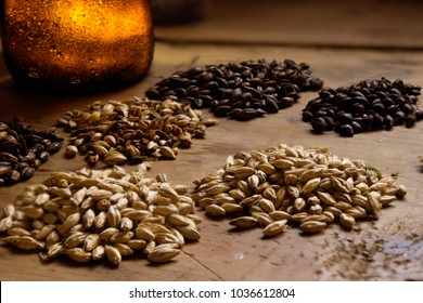 six variations of barley grains on wood table for beer brewing