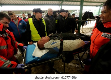 SKARYSZEW, POLAND - MARCH 6, 2017: Riots between breeders and environmentalists during the horse market.The Skaryszew horse fair is a popular market for the buying and selling of horses.