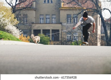 Skateboarder being pulled by sausage mix breed dog on the leash. Funny scene, running happy dog. Skateboarding and animals, pets and sport activities. Street skater with hound. Partners. Spring. Bloom