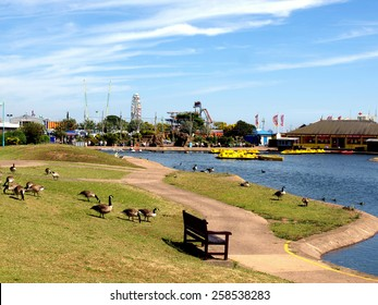 SKEGNESS, LINCOLNSHIRE, UK. JULY 16, 2014.   Canadian geese against the boating lake with the funfair in the background at Skegness, Lincolnshire, England, UK.
