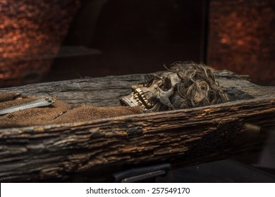Skeleton of a bronze age man in a burial mound.
