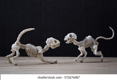 Skeleton dog and a skeleton cat