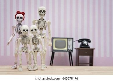 The skeleton family