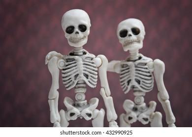 Skeleton friends