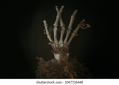 Skeleton Hand Crossing Fingers with Dried Flowers