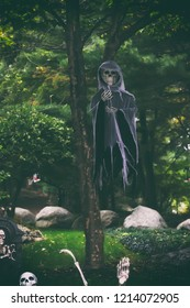 A skeleton hanging off a tree for halloween.