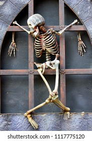 Skeleton hanging on wall - haunted house