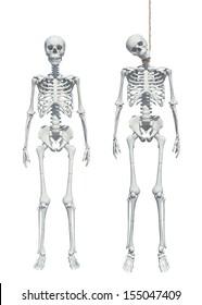 skeleton hangman's noose isolated on white background