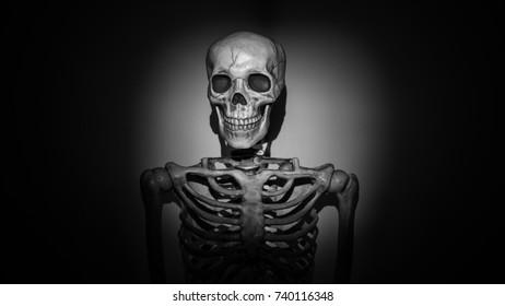 Skeleton illuminated by flashlight or spotlight. Film noir style, black and white.