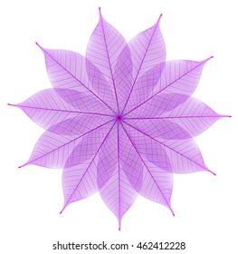 Skeleton leaf abstract background