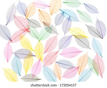 Skeleton leaf abstract background. Decorative ornament of colored leaves pattern. Template for design fabric, backgrounds, wrapping paper, package, covers