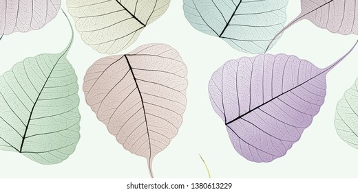 Skeleton leaf coloured background closeup