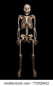 Skeleton of a man isolated on black background