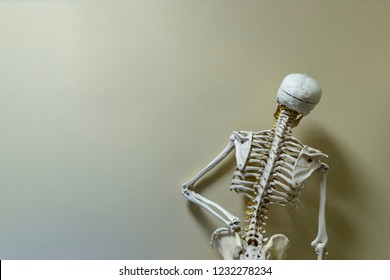 Skeleton model standing akimbo in vintage color.