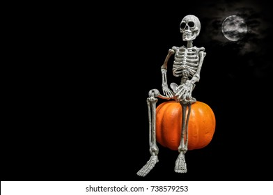 Skeleton Portrait / Portrait of a Halloween skeleton sitting on a styrofoam pumpkin with a nice cloud covered moon in the background