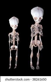 Skeletons of babies
