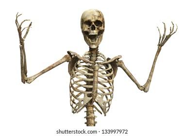 Skelton that is screaming