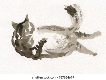 Sketch of a cat in watercolor