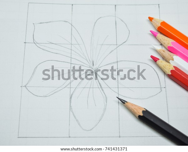 Sketch Flower On White Paper That Stock Photo Edit Now 741431371