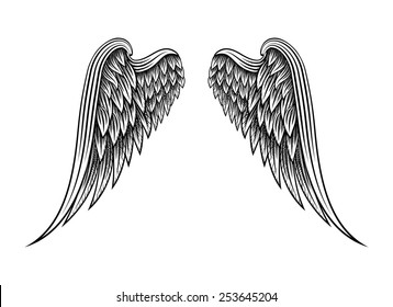 Sketch of two hand drawn angel wings isolated on white background