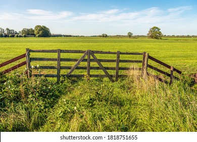 Skewed and weathered old wooden gate on the edge of a meadow in a Dutch polder. The cows are in a meadow further on. A blackberry bush and other wild plants grow near the fence. It's summer now. - Shutterstock ID 1818751655
