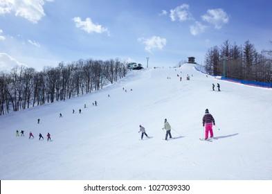 ski resort in hokkaido