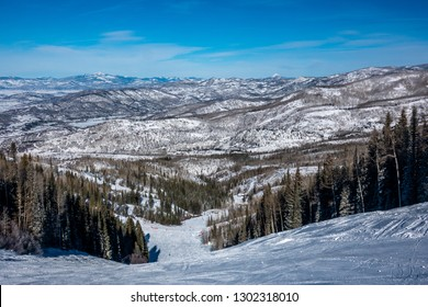 The ski slopes of Steamboat Springs, on Mount Werner of the Rocky Mountains of Colorado, lined by Pine and Aspen trees.